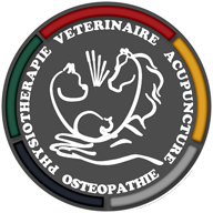 Dr TESSIER Logo